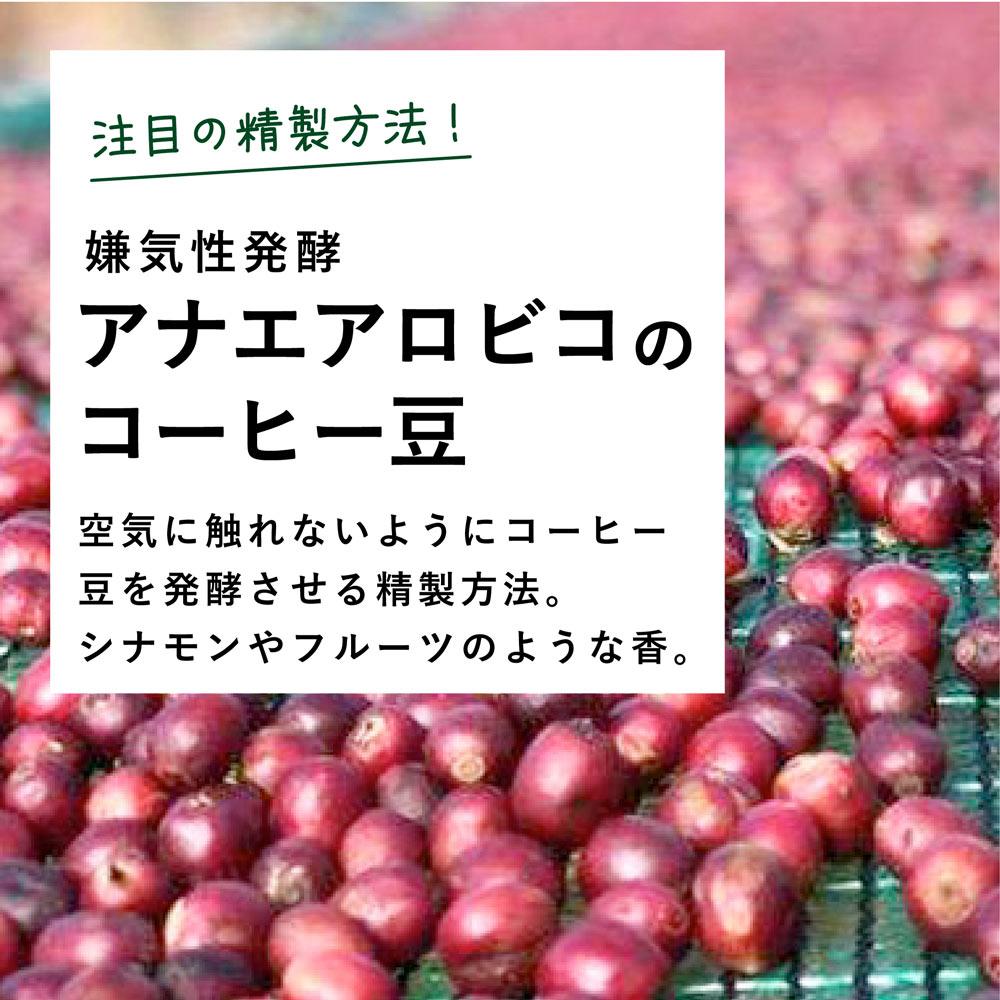 嫌気性発酵のコーヒー豆。アナエアロビコ