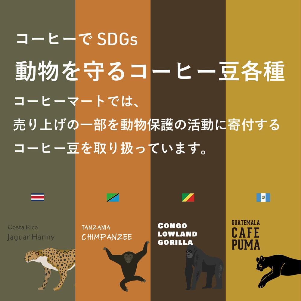 動物を守るコーヒー豆特集。コーヒー豆でSDGs