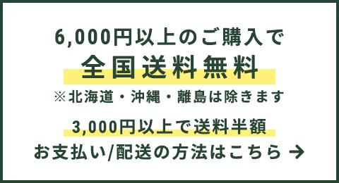 8,000円以上お買い上げで送料無料
