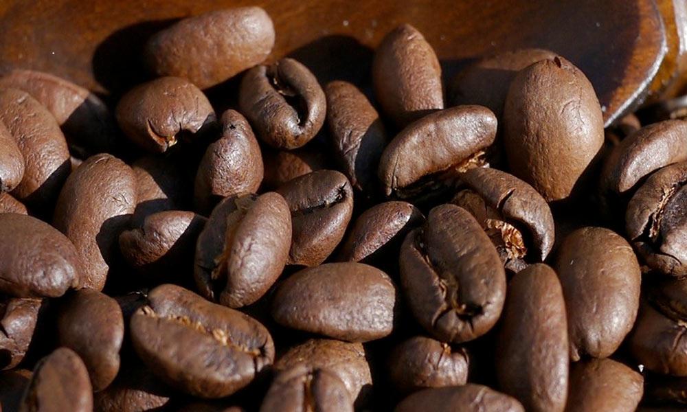 パナマ エスメラルダ農園 コーヒー豆セット 【送料無料(ネコポス)】