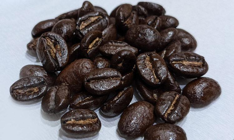 コーヒー豆 コンゴ ローランド・ゴリラ